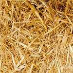 Где в орле пополнить карту кукуруза